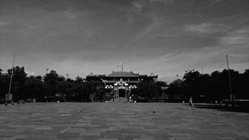 DSC_8718